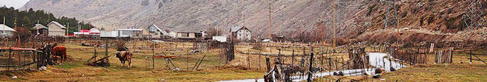 поселок тегенекли