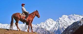 катание на лошадях приэльбрусье